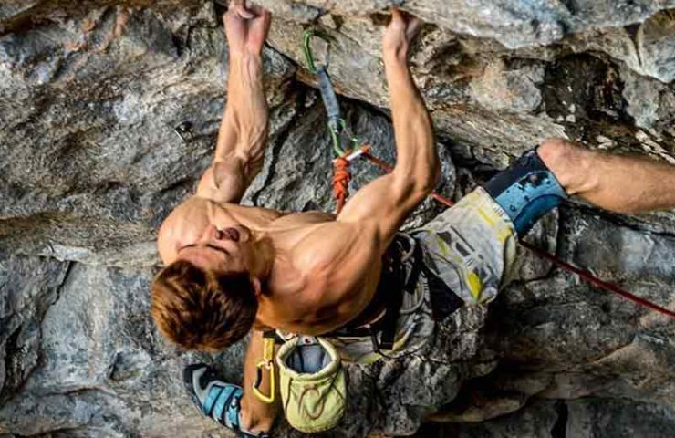 You use these muscles when climbing