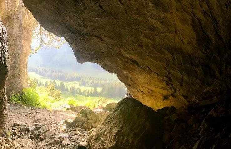 Explora la cueva: sube, gatea, sorpréndete