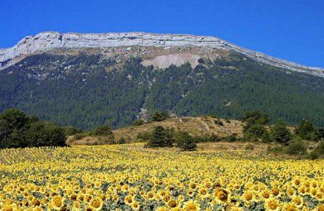 La zona de escalada deportiva Céüse está amenazada de cierre