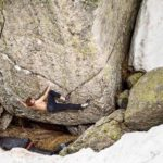 Giuliano Cameroni im Höhenflug: Erstbegehung Hazel Grace (8c/8c+)